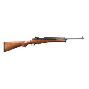 Ruger Mini-14 Ranch 223rem
